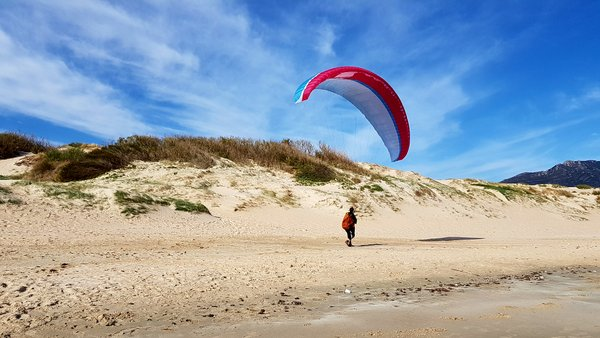 blue sky beach paraglider